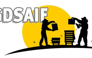 Logo GDSAIF